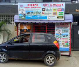 CIPI IMMOBILIER ET E-MONEY