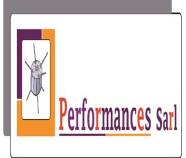 CABINET PERFORMANCES SARL